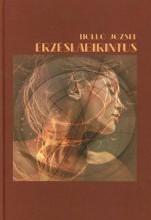 ÉRZÉSLABIRINTUS - Ebook - HOLLÓ JÓZSEF