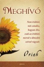 MEGHÍVÓ - NEM ÉRDEKEL, MIT CSINÁLSZ, HOGYAN ÉLSZ, ... - Ekönyv - ORIAH