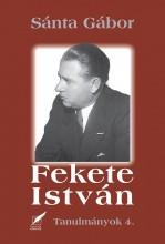 FEKETE ISTVÁN - TANULMÁNYOK 4. - Ekönyv - SÁNTA GÁBOR