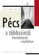 PÉCS A TÖBBSZINTŰ KORMÁNYZÁS CSAPDÁJÁBAN - Ebook - IDR PUBLIKON KIADÓ