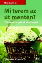 MI TEREM AZ ÚT MENTÉN? - Ebook - RECHT, CHRISTINE