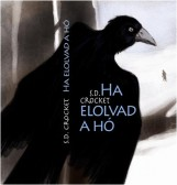 HA ELOLVAD A HÓ - Ebook - CROCKETT, S.D.