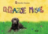 DR. DRAZSÉ MESÉL - Ekönyv - DR. SÁNDOR ZSUZSA