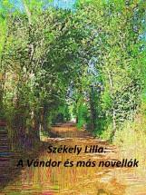 A vándor és más novellák - Ekönyv - Székely Lilla