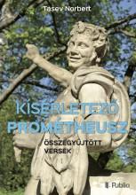 Kísérletező Prométheusz - Ekönyv - Tasev Norbert