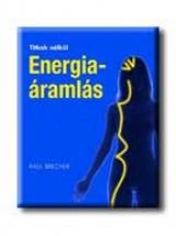 ENERGIAÁRAMLÁS - TITKOK NÉLKÜL - - Ekönyv - BRECHER, PAUL