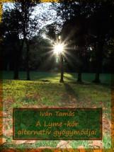 A Lyme-kór alternatív gyógymódjai - Ebook - Iván Tamás