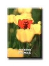 BOLDOGSÁG - Ekönyv - CHINMOY, SRI