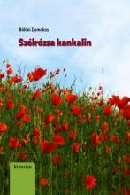 SZÉLRÓZSA KANKALIN - Ebook - BÖLÖNI DOMOKOS