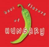 BEST FLAVORS OF HUNGARY - Ekönyv - KOLOZSVÁRI ILDIKÓ ÉS HAJNI ISTVÁN