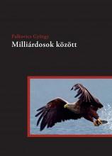 Milliárdosok között - Ekönyv - Palkovics György