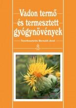 VADON TERMŐ ÉS TERMESZTETT GYÓGYNÖVÉNYEK - Ekönyv - BERNÁTH JENŐ