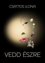 VEDD ÉSZRE - Ekönyv - CSATTOS ILONA