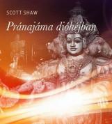 PRÁNAJÁMA DIÓHÉJBAN - Ekönyv - SHAW, SCOTT