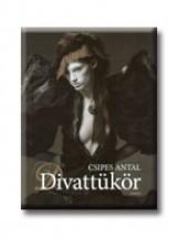 DIVATTÜKÖR - Ekönyv - CSIPES ANTAL