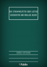 Der Struwwelpeter  oder lustige Geschichten und drollige Bilder - Ebook - Heinrich Hoffmann