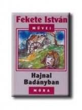 HAJNAL BADÁNYBAN - Ekönyv - FEKETE ISTVÁN