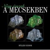 NÉGY ÉVSZAK A MECSEKBEN - Ekönyv - MÜLLER NÁNDOR