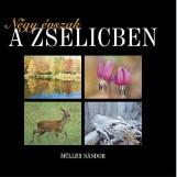 NÉGY ÉVSZAK A ZSELICBEN - Ekönyv - MÜLLER NÁNDOR