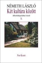 KÉT KULTÚRA KÖZÖTT 2. - MŰVELŐDÉSPOLITIKAI ÍRÁSOK - Ekönyv - NÉMETH LÁSZLÓ