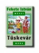 TÜSKEVÁR - Ekönyv - FEKETE ISTVÁN
