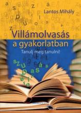 VILLÁMOLVASÁS A GYAKORLATBAN - BŐVÍTETT KIADÁS - Ebook - LANTOS MIHÁLY