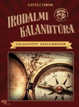IRODALMI KALANDTÚRA - VÁLOGATOTT TANULMÁNYOK - Ebook - GINTLI TIBOR