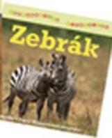 ZEBRÁK - SZÓRAKOZTATÓ ÁLLATVILÁG - Ekönyv - TARSAGO MAGYARORSZÁG KFT.