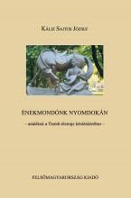 ÉNEKMONDÓNK NYOMDOKÁN - ADALÉKOK A TINÓDI-ÉLETRAJZ KÉRDÉSKÖRÉHEZ - Ekönyv - KÁLIZ SAJTOS JÓZSEF
