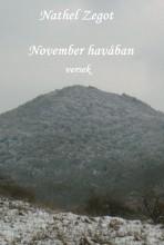 November havában - Ekönyv - Nathel Zegot