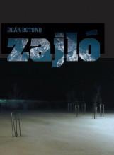 ZAJLÓ - Ebook - DEÁK BOTOND