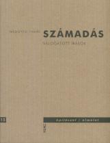 SZÁMADÁS - VÁLOGATOTT ÍRÁSOK - Ekönyv - MEGGYESI TAMÁS