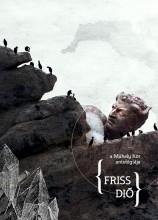 FRISS DIÓ - A MŰHELY KÖR ANTOLÓGIÁJA - Ekönyv - JAK