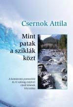 MINT PATAK A SZIKLÁK KÖZT - Ekönyv - CSERNOK ATTILA