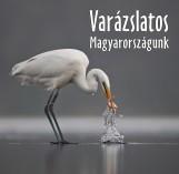 VARÁZSLATOS MAGYARORSZÁGUNK - Ekönyv - .