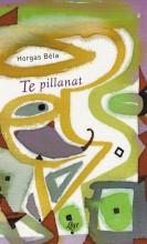 TE PILLANAT - Ekönyv - HORGAS BÉLA