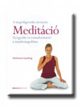 MEDITÁCIÓ - GYÓGYULÁS ÉS TRANSZFORMÁCIÓ A MINDENNAPOKBAN - - Ekönyv - GAUDING, MADONNA