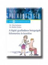 LÉGÚTI GYULLADÁSOK - A NÁTHÁTÓL A TÜDŐGYULLADÁSIG - Ebook - TÓTA JULIANNA, DR - BALIKÓ ZOLTÁN, DR.