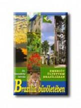 BRAZILIA BŰVÖLETÉBEN - Ekönyv - SZENDRŐY ISTVÁN DR.