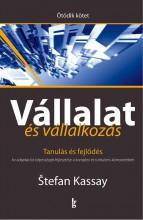 VÁLLALAT ÉS VÁLLALKOZÁS V. KÖTET. - TANULÁS ÉS FEJLŐDÉS - Ekönyv - KASSAY, STEFAN
