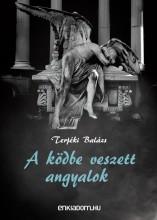 A ködbe veszett angyalok - Ebook - Terjéki Balázs