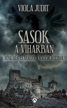 SASOK A VIHARBAN - Ekönyv - VIOLA JUDIT
