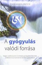 A GYÓGYULÁS VALÓDI FORRÁSA - Ekönyv - TENZIN WANGYAL RINPOCSE