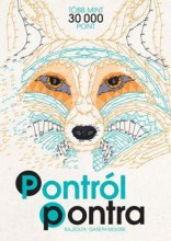 PONTRÓL PONTRA - TÖBB MINT 30 000 PONT (SZÍNEZŐ) - Ekönyv - MOORE, GARETH