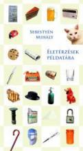 ÉLETÉRZÉSEK PÉLDATÁRA - Ekönyv - SEBESTYÉN MIHÁLY