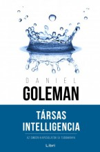 Társas Intelligencia - Ebook - Daniel Goleman